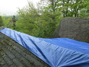 And the new 'roof', with a lovely view. Fortunately you really can't see it from the road. How embarrassing!